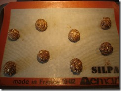 Raisin Oatmeal Cookies  (1)