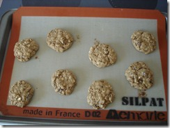 Raisin Oatmeal Cookies  (4)
