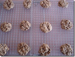 Raisin Oatmeal Cookies  (5)