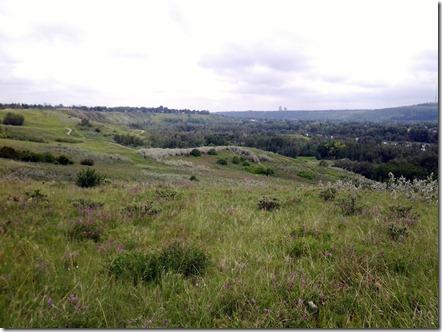 Bowmont September 4 2012