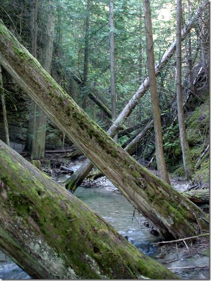 Margaret Falls September 1 2012 (1)
