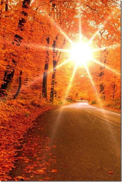 Fall Sun September 20 2012