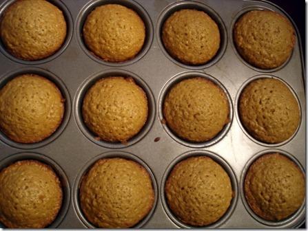 Oatmeal Muffins September 1 2012 (2)