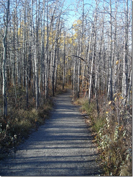Glenbow Ranch Provincial Park October 17 2012 (32)