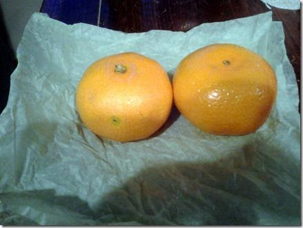 Mandarin Oranges November 22 2012