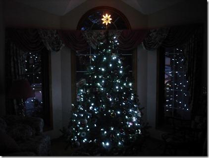 Christmas Decorating December 7 2012 (12)