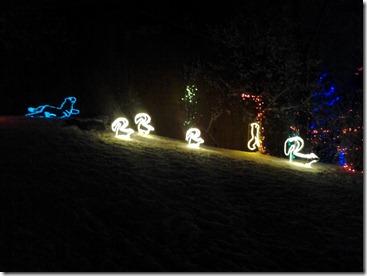 Zoo Lights December 7 2012 (5)